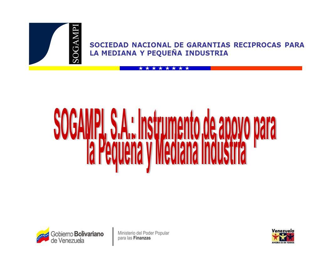 SOCIEDAD NACIONAL DE GARANTIAS RECIPROCAS PARA LA MEDIANA Y PEQUEÑA INDUSTRIA Fuente: SOGAMPI, S.A (Recursos Propios) 66,82%