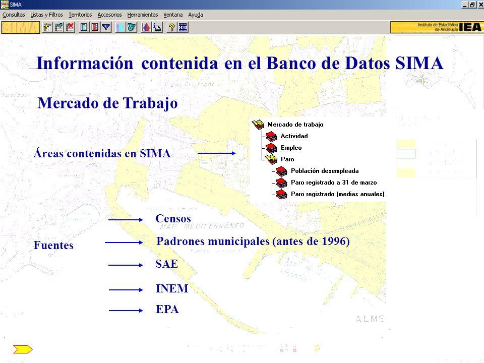 Información contenida en el Banco de Datos SIMA Mercado de Trabajo Áreas contenidas en SIMA Fuentes Censos Padrones municipales (antes de 1996) SAE IN