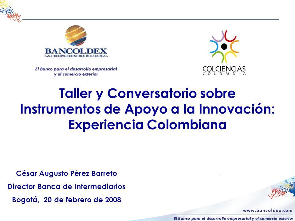 César Augusto Pérez Barreto Director Banca de Intermediarios Bogotá, 20 de febrero de 2008 Taller y Conversatorio sobre Instrumentos de Apoyo a la Innovación: Experiencia Colombiana