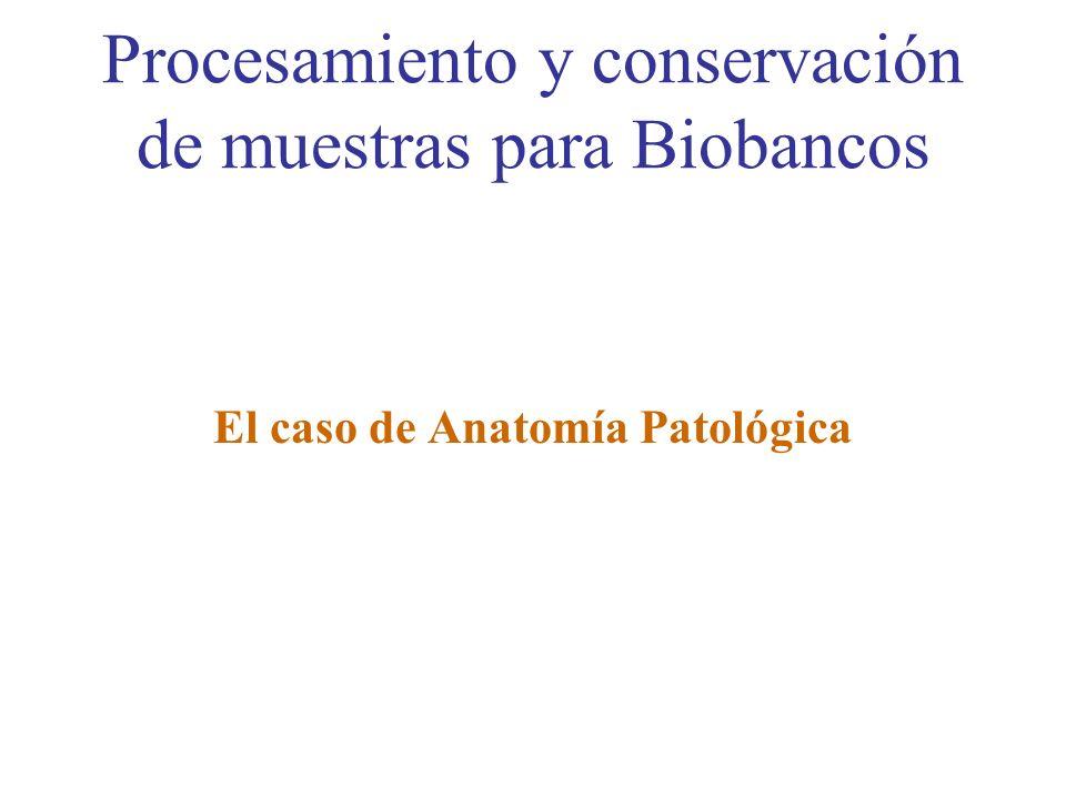 Procesamiento y conservación de muestras para Biobancos El caso de Anatomía Patológica