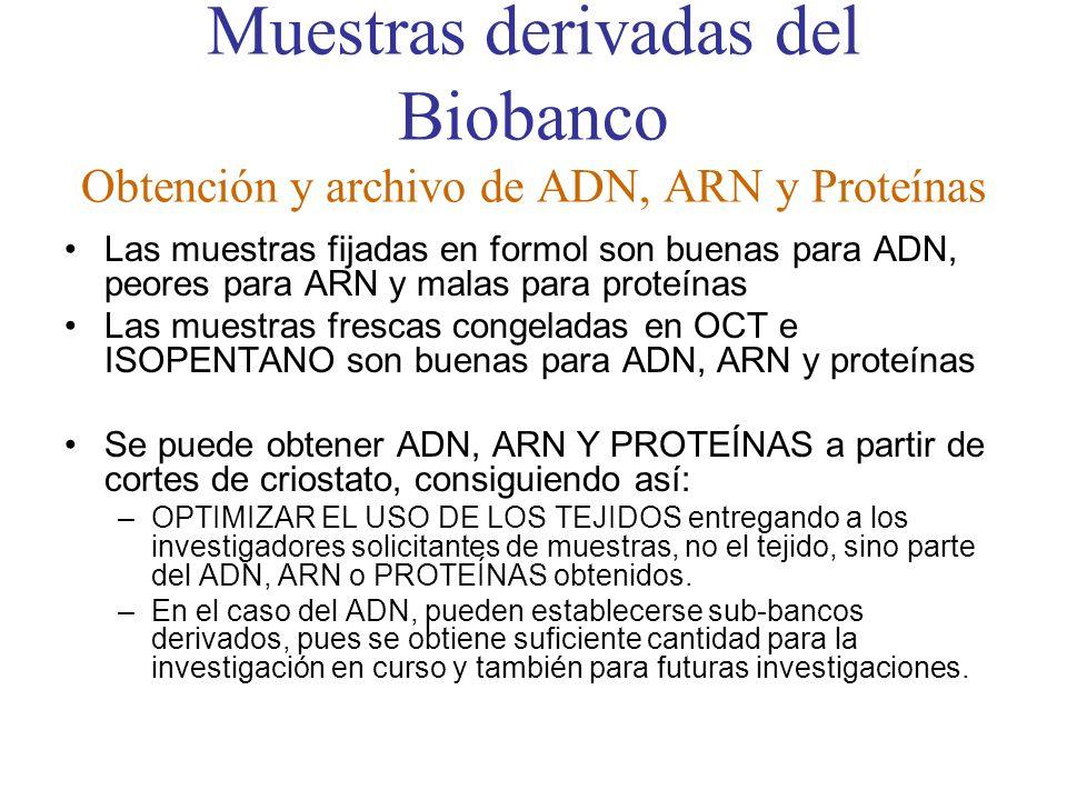 Muestras derivadas del Biobanco Obtención y archivo de ADN, ARN y Proteínas Las muestras fijadas en formol son buenas para ADN, peores para ARN y mala