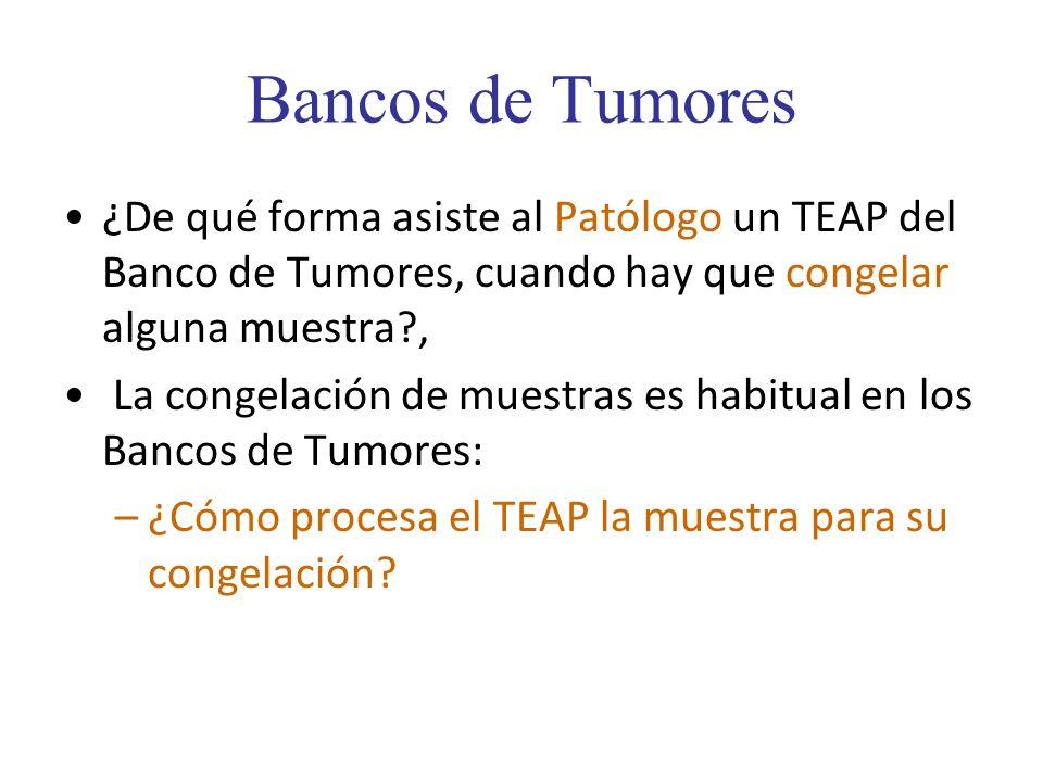 Bancos de Tumores ¿De qué forma asiste al Patólogo un TEAP del Banco de Tumores, cuando hay que congelar alguna muestra?, La congelación de muestras e