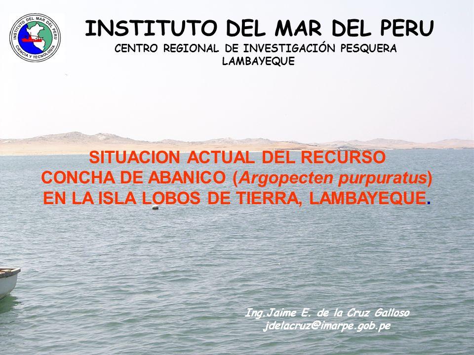 Aspectos bioecologicos de la concha de abanico (Argopecten purpuratus) HABITAT Bahías protegidas.
