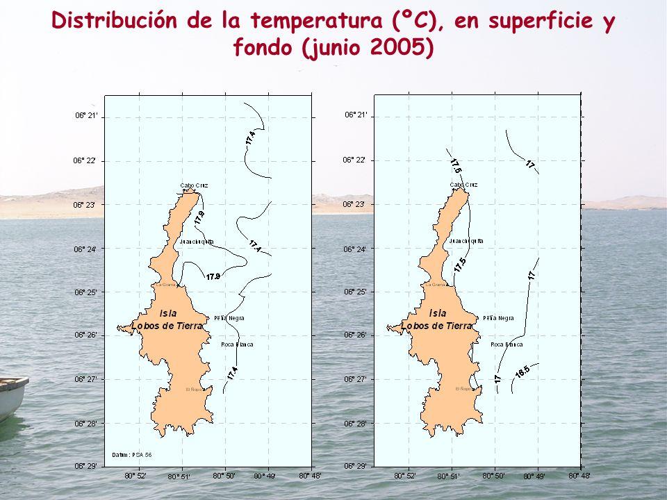 Distribución de la temperatura (ºC), en superficie y fondo (junio 2005)
