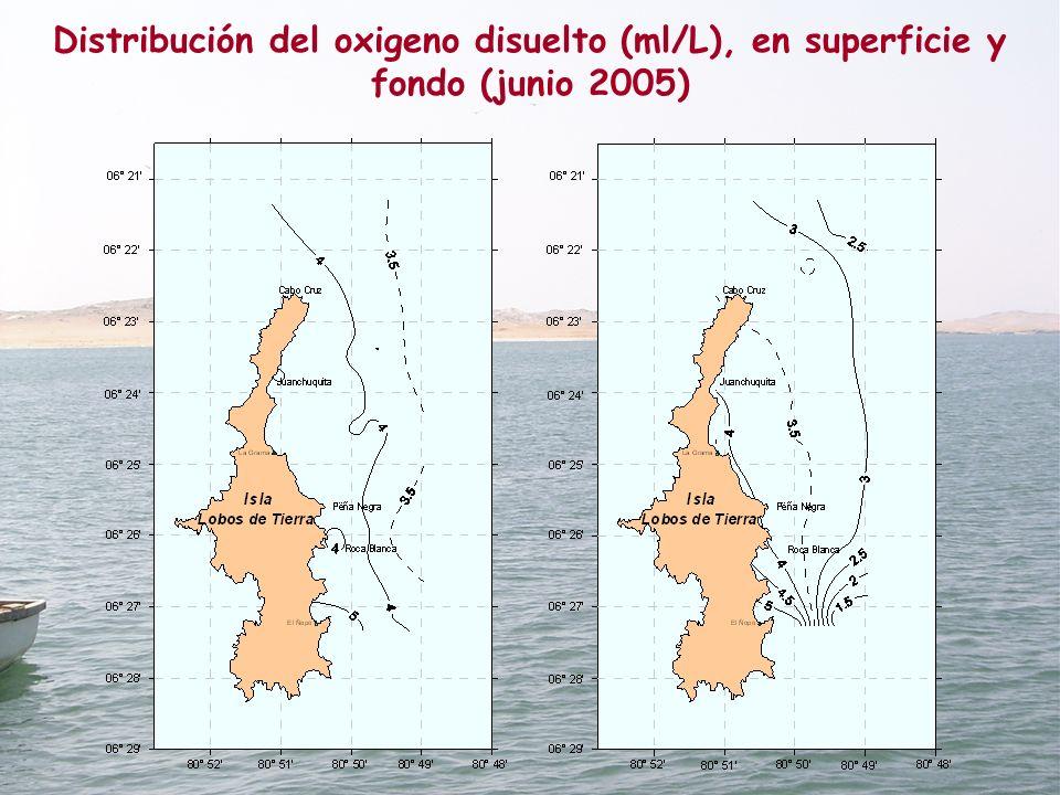 Distribución del oxigeno disuelto (ml/L), en superficie y fondo (junio 2005)