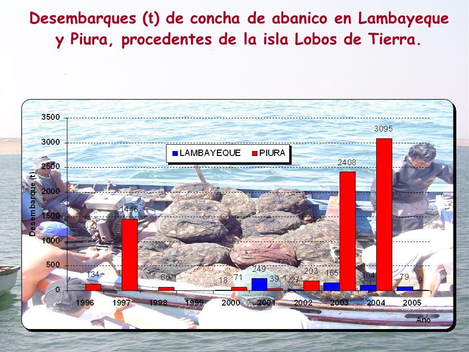 Desembarques ( t ) de concha de abanico en Lambayeque y Piura, procedentes de la isla Lobos de Tierra.