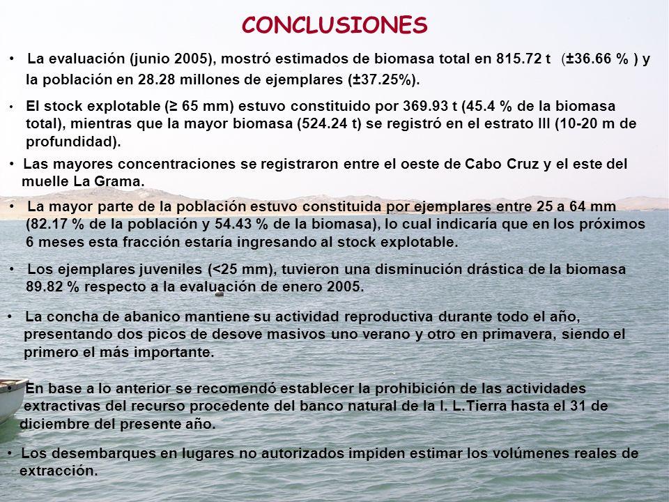 CONCLUSIONES El stock explotable ( 65 mm) estuvo constituido por 369.93 t (45.4 % de la biomasa total), mientras que la mayor biomasa (524.24 t) se re