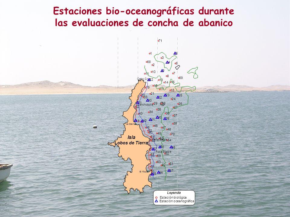 Estaciones bio-oceanográficas durante las evaluaciones de concha de abanico La Grama El Ñopo 1 2 3 4 5 6 7 8 9 10 11 12 13 14 15 16 17 18 19 20 21 22