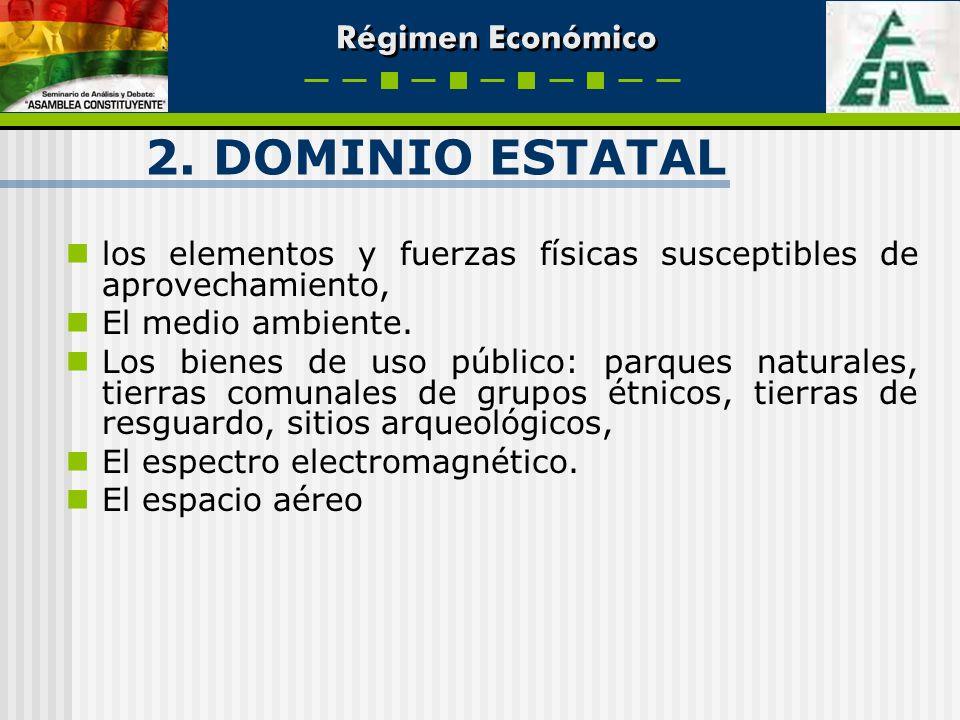 2. DOMINIO ESTATAL los elementos y fuerzas físicas susceptibles de aprovechamiento, El medio ambiente. Los bienes de uso público: parques naturales, t