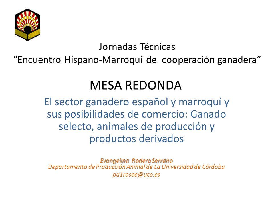 MESA REDONDA El sector ganadero español y marroquí y sus posibilidades de comercio: Ganado selecto, animales de producción y productos derivados Jorna