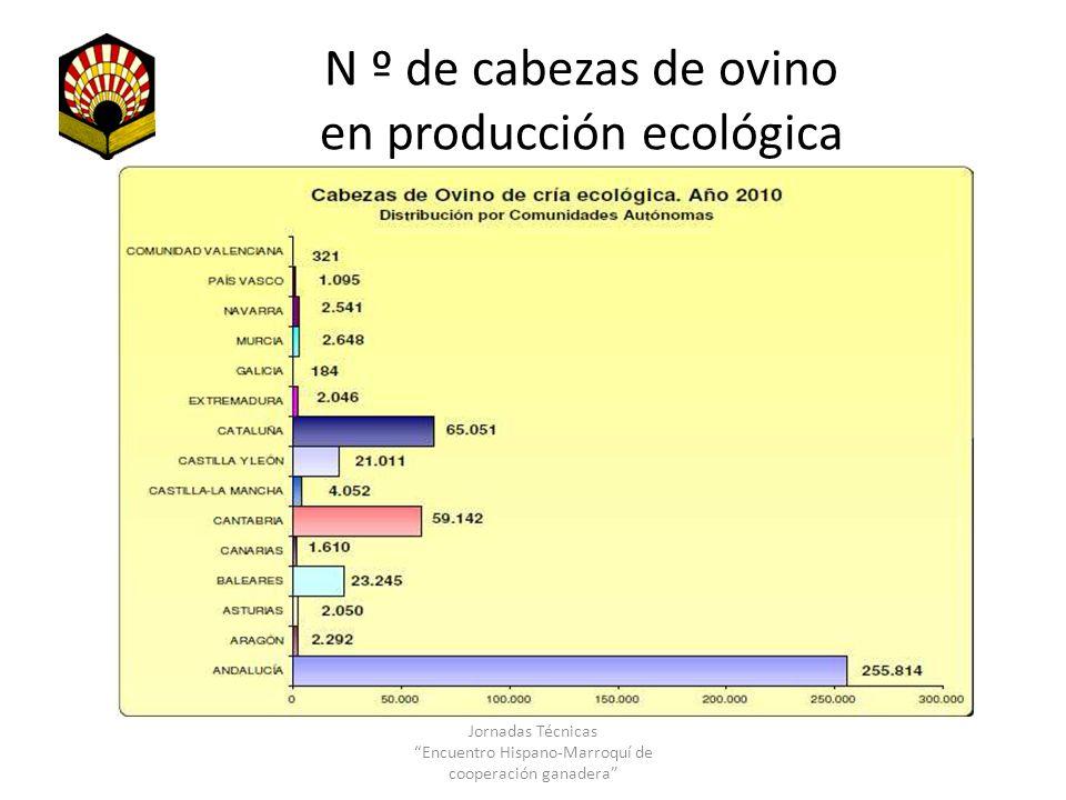 N º de cabezas de ovino en producción ecológica Jornadas Técnicas Encuentro Hispano-Marroquí de cooperación ganadera