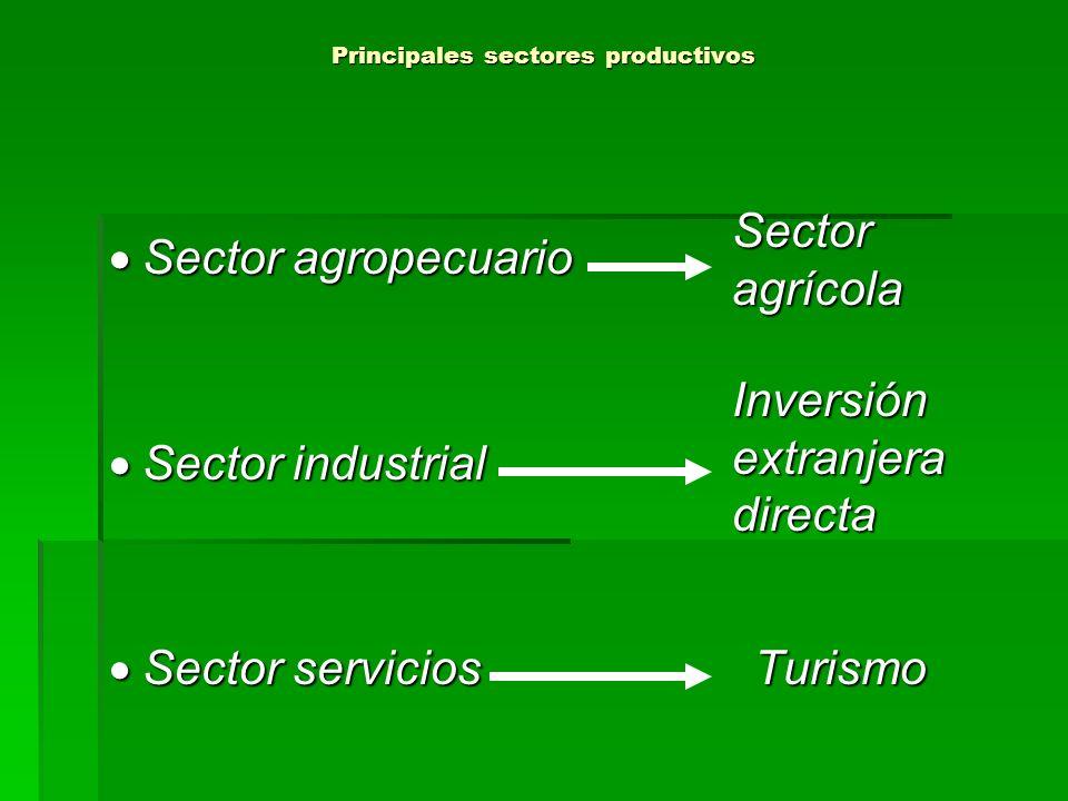 Principales sectores productivos Sector agropecuario Sector agropecuario Sector industrial Sector industrial Sector servicios Turismo Sector servicios