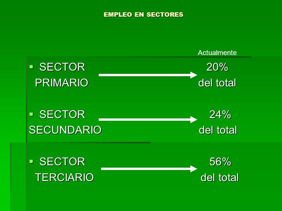 EMPLEO EN SECTORES SECTOR 20% SECTOR 20% PRIMARIO del total PRIMARIO del total SECTOR 24% SECTOR 24% SECUNDARIO del total SECTOR 56% SECTOR 56% TERCIA