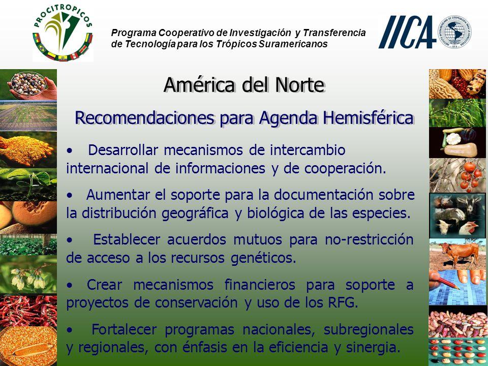 Programa Cooperativo de Investigación y Transferencia de Tecnología para los Trópicos Suramericanos Desarrollar mecanismos de intercambio internacional de informaciones y de cooperación.