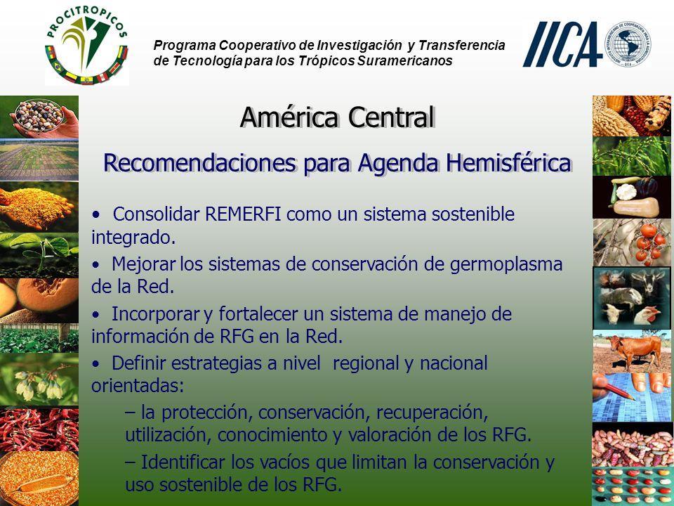 Programa Cooperativo de Investigación y Transferencia de Tecnología para los Trópicos Suramericanos Consolidar REMERFI como un sistema sostenible integrado.