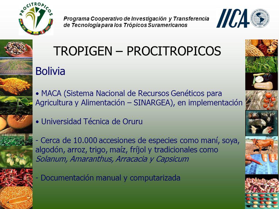 Programa Cooperativo de Investigación y Transferencia de Tecnología para los Trópicos Suramericanos TROPIGEN – PROCITROPICOS Bolivia MACA (Sistema Nacional de Recursos Genéticos para Agricultura y Alimentación – SINARGEA), en implementación Universidad Técnica de Oruru - Cerca de 10.000 accesiones de especies como maní, soya, algodón, arroz, trigo, maíz, fríjol y tradicionales como Solanum, Amaranthus, Arracacia y Capsicum - Documentación manual y computarizada