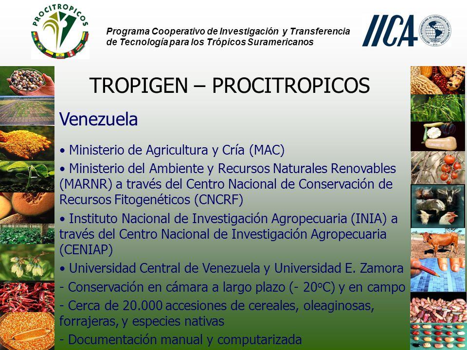 Programa Cooperativo de Investigación y Transferencia de Tecnología para los Trópicos Suramericanos TROPIGEN – PROCITROPICOS Venezuela Ministerio de Agricultura y Cría (MAC) Ministerio del Ambiente y Recursos Naturales Renovables (MARNR) a través del Centro Nacional de Conservación de Recursos Fitogenéticos (CNCRF) Instituto Nacional de Investigación Agropecuaria (INIA) a través del Centro Nacional de Investigación Agropecuaria (CENIAP) Universidad Central de Venezuela y Universidad E.