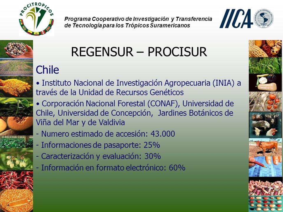 Programa Cooperativo de Investigación y Transferencia de Tecnología para los Trópicos Suramericanos REGENSUR – PROCISUR Chile Instituto Nacional de Investigación Agropecuaria (INIA) a través de la Unidad de Recursos Genéticos Corporación Nacional Forestal (CONAF), Universidad de Chile, Universidad de Concepción, Jardines Botánicos de Viña del Mar y de Valdivia - Numero estimado de accesión: 43.000 - Informaciones de pasaporte: 25% - Caracterización y evaluación: 30% - Información en formato electrónico: 60%