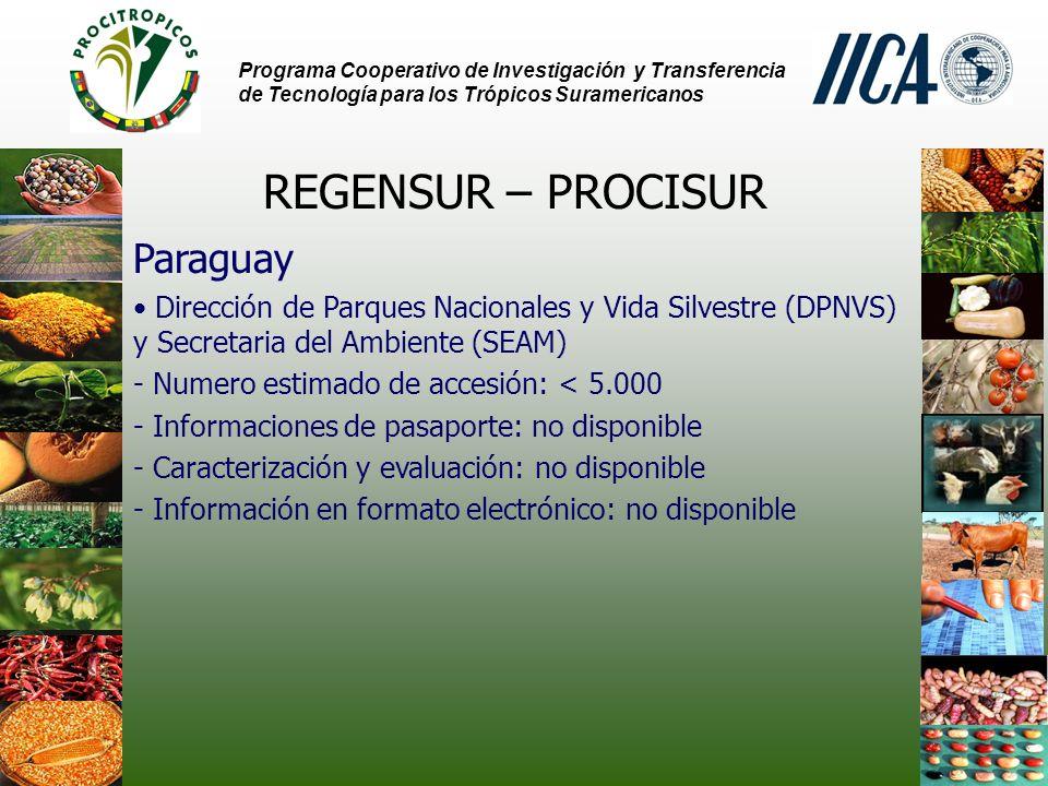 Programa Cooperativo de Investigación y Transferencia de Tecnología para los Trópicos Suramericanos REGENSUR – PROCISUR Paraguay Dirección de Parques Nacionales y Vida Silvestre (DPNVS) y Secretaria del Ambiente (SEAM) - Numero estimado de accesión: < 5.000 - Informaciones de pasaporte: no disponible - Caracterización y evaluación: no disponible - Información en formato electrónico: no disponible