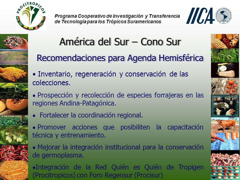 Programa Cooperativo de Investigación y Transferencia de Tecnología para los Trópicos Suramericanos Inventario, regeneración y conservación de las colecciones.