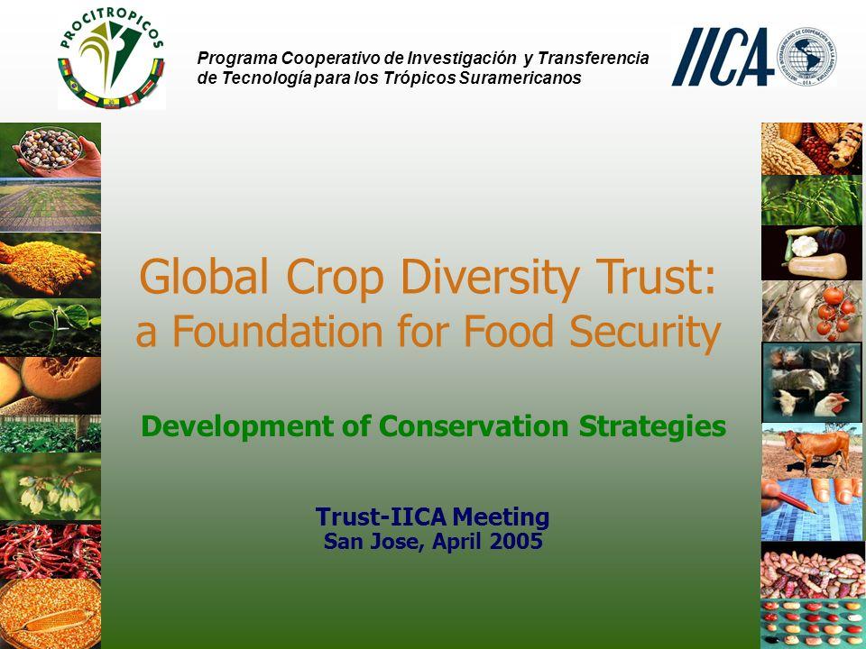 Programa Cooperativo de Investigación y Transferencia de Tecnología para los Trópicos Suramericanos Global Crop Diversity Trust: a Foundation for Food Security Development of Conservation Strategies Trust-IICA Meeting San Jose, April 2005