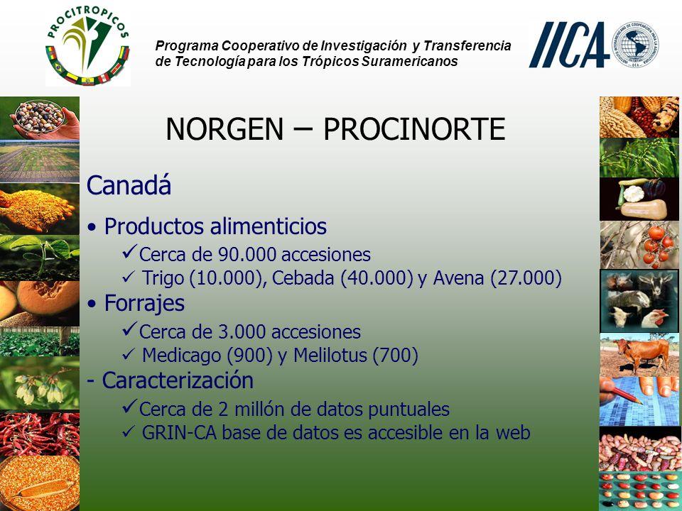 Programa Cooperativo de Investigación y Transferencia de Tecnología para los Trópicos Suramericanos CAPGERNET Rede de Recursos Genéticos del Caribe -PROCICARIBE-