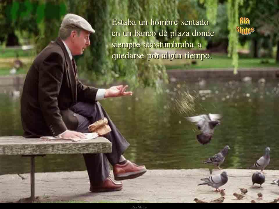 Ria Slides Estaba un hombre sentado en un banco de plaza donde siempre acostumbraba a quedarse por algún tiempo.