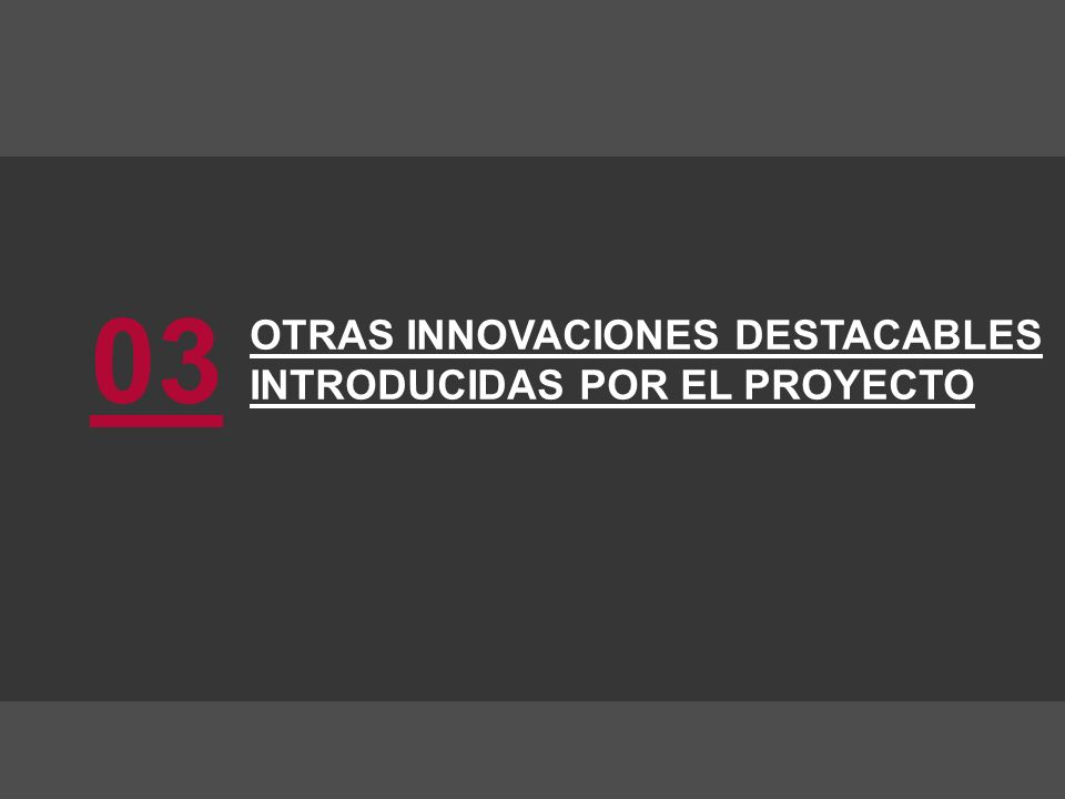 OTRAS INNOVACIONES DESTACABLES INTRODUCIDAS POR EL PROYECTO 03