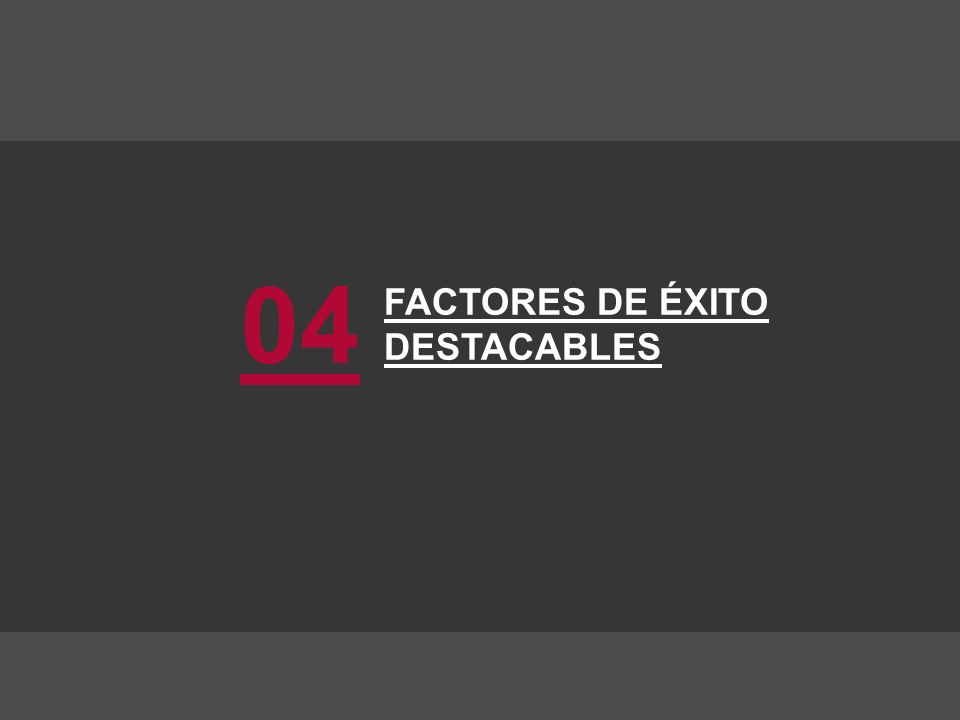 FACTORES DE ÉXITO DESTACABLES 04