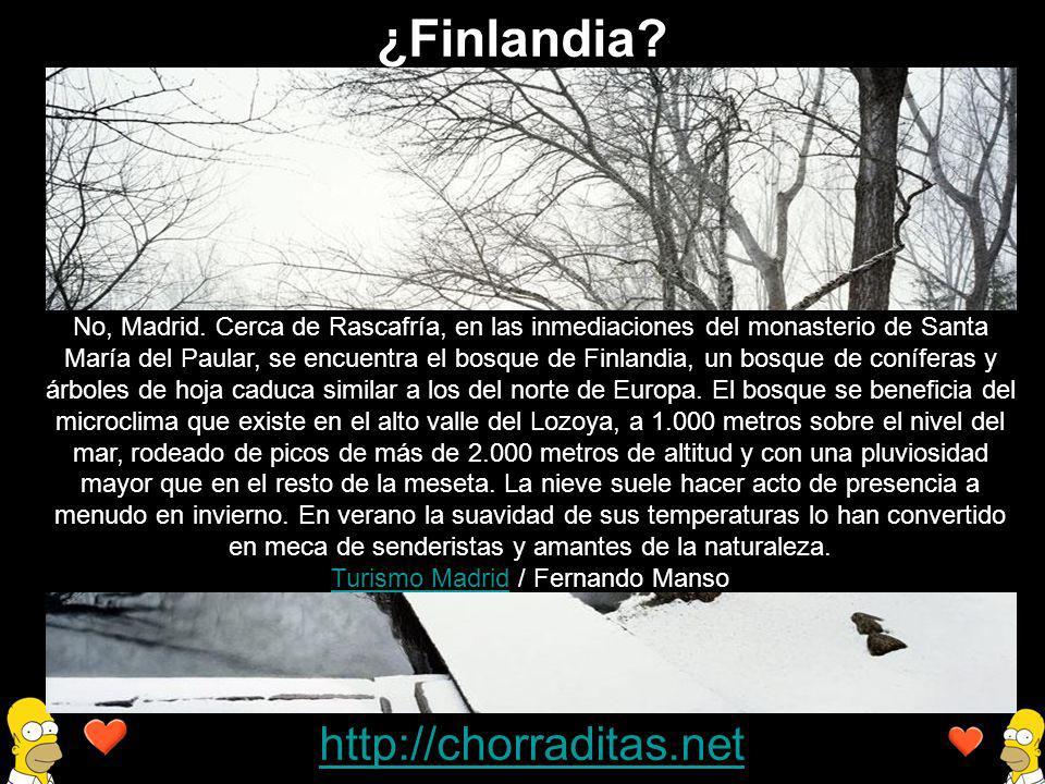 http://chorraditas.net No, Madrid. Cerca de Rascafría, en las inmediaciones del monasterio de Santa María del Paular, se encuentra el bosque de Finlan