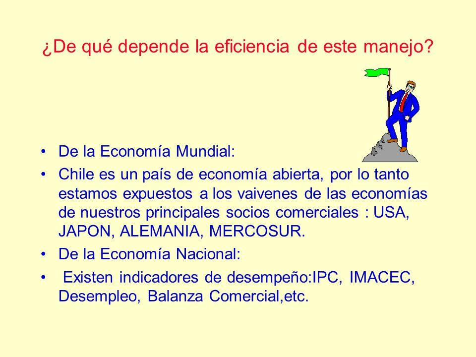 ¿De qué depende la eficiencia de este manejo? De la Economía Mundial: Chile es un país de economía abierta, por lo tanto estamos expuestos a los vaive