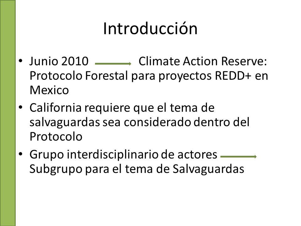 Introducción Junio 2010 Climate Action Reserve: Protocolo Forestal para proyectos REDD+ en Mexico California requiere que el tema de salvaguardas sea considerado dentro del Protocolo Grupo interdisciplinario de actores Subgrupo para el tema de Salvaguardas