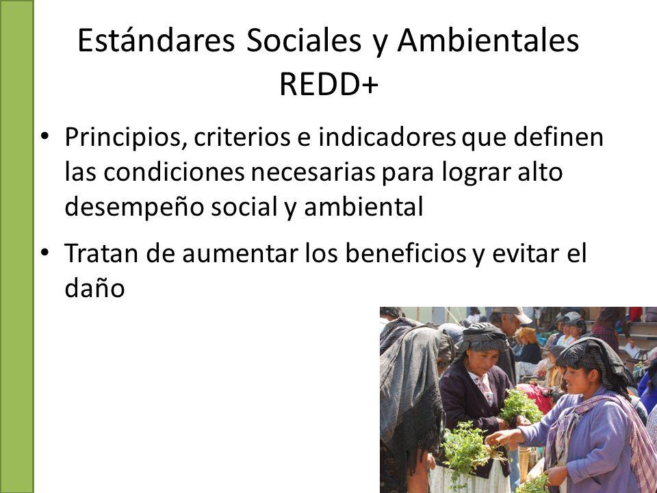 Estándares Sociales y Ambientales REDD+ Principios, criterios e indicadores que definen las condiciones necesarias para lograr alto desempeño social y ambiental Tratan de aumentar los beneficios y evitar el daño