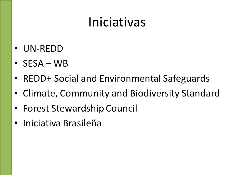 UN-REDD SESA – WB REDD+ Social and Environmental Safeguards Climate, Community and Biodiversity Standard Forest Stewardship Council Iniciativa Brasileña Iniciativas