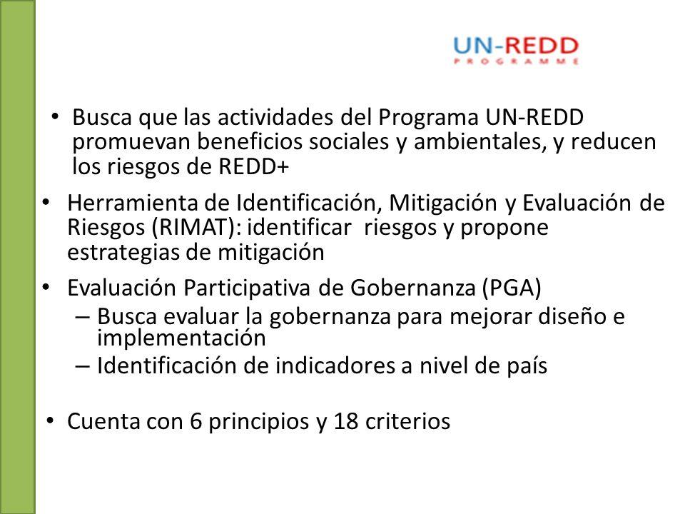 Busca que las actividades del Programa UN-REDD promuevan beneficios sociales y ambientales, y reducen los riesgos de REDD+ Herramienta de Identificación, Mitigación y Evaluación de Riesgos (RIMAT): identificar riesgos y propone estrategias de mitigación Evaluación Participativa de Gobernanza (PGA) – Busca evaluar la gobernanza para mejorar diseño e implementación – Identificación de indicadores a nivel de país Cuenta con 6 principios y 18 criterios