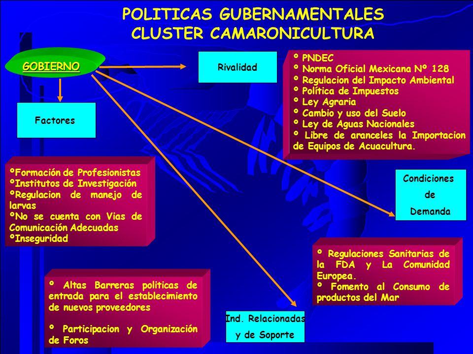 GOBIERNO POLITICAS GUBERNAMENTALES CLUSTER CAMARONICULTURA Rivalidad Ind. Relacionadas y de Soporte Factores Condiciones de Demanda º PNDEC º Norma Of