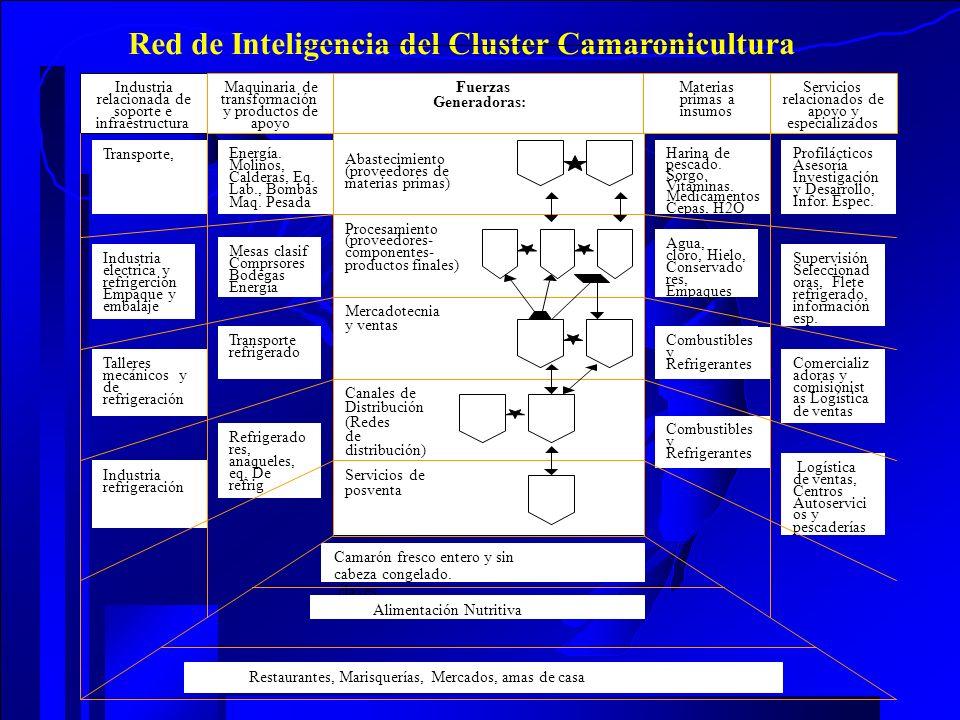 Supervisión Seleccionad oras, Flete refrigerado, información esp. Red de Inteligencia del Cluster Camaronicultura Combustibles y Refrigerantes Logísti