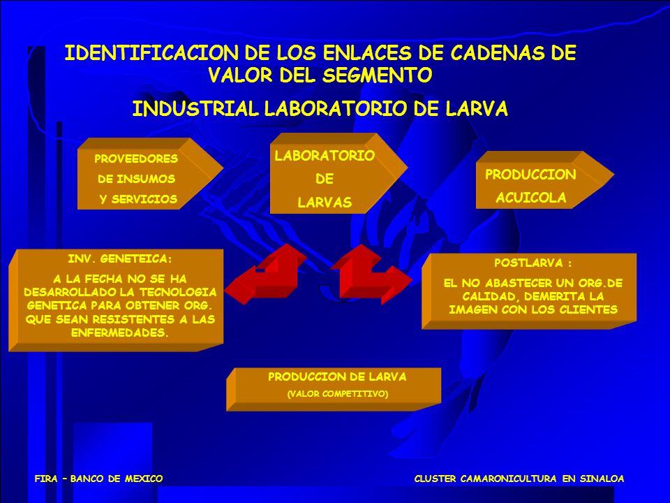 PROVEEDORES DE INSUMOS Y SERVICIOS PRODUCCION ACUICOLA LABORATORIO DE LARVAS IDENTIFICACION DE LOS ENLACES DE CADENAS DE VALOR DEL SEGMENTO INDUSTRIAL