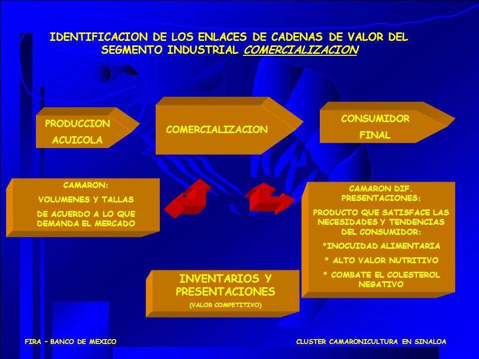 CONSUMIDOR FINAL COMERCIALIZACION IDENTIFICACION DE LOS ENLACES DE CADENAS DE VALOR DEL SEGMENTO INDUSTRIAL COMERCIALIZACION CAMARON: VOLUMENES Y TALL