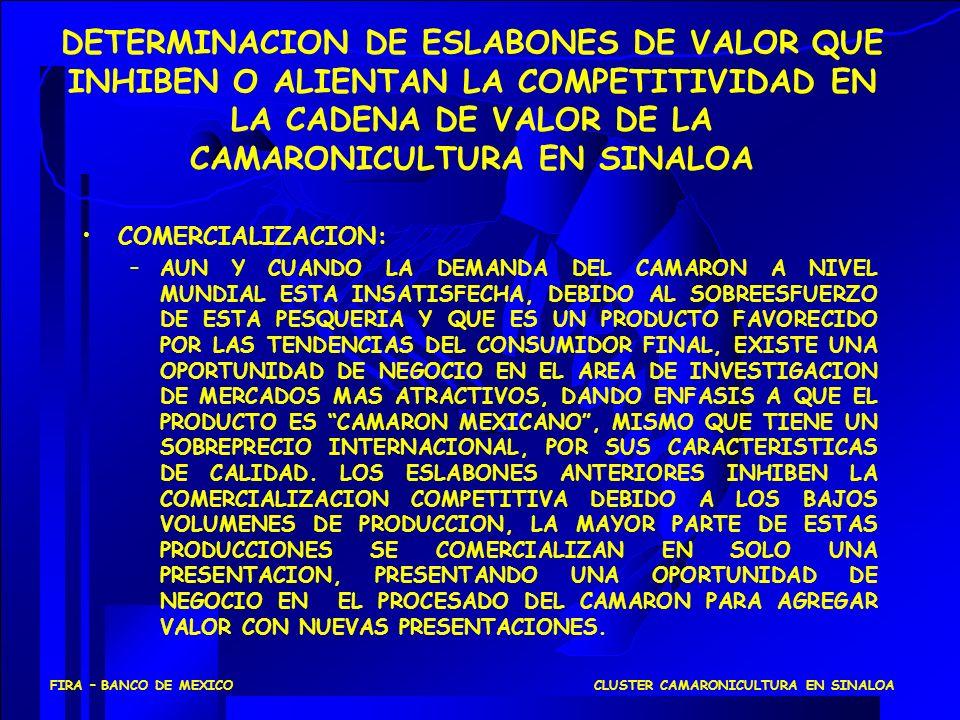 DETERMINACION DE ESLABONES DE VALOR QUE INHIBEN O ALIENTAN LA COMPETITIVIDAD EN LA CADENA DE VALOR DE LA CAMARONICULTURA EN SINALOA COMERCIALIZACION: