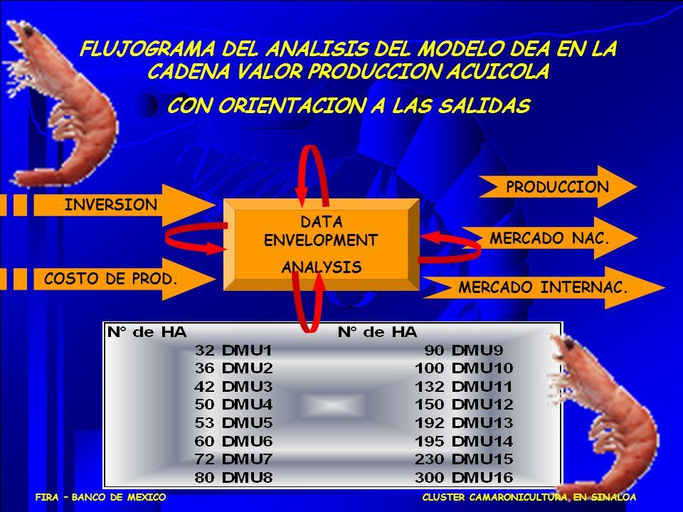 FLUJOGRAMA DEL ANALISIS DEL MODELO DEA EN LA CADENA VALOR PRODUCCION ACUICOLA CON ORIENTACION A LAS SALIDAS DATA ENVELOPMENT ANALYSIS INVERSION COSTO