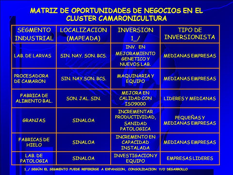 MATRIZ DE OPORTUNIDADES DE NEGOCIOS EN EL CLUSTER CAMARONICULTURA SEGMENTO INDUSTRIAL LOCALIZACION (MAPEADA) INVERSION 1_/ TIPO DE INVERSIONISTA LAB.