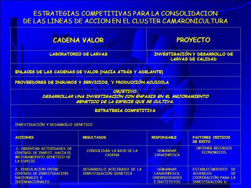 ESTRATEGIAS COMPETITIVAS PARA LA CONSOLIDACION DE LAS LINEAS DE ACCION EN EL CLUSTER CAMARONICULTURA CADENA VALOR PROYECTO LABORATORIO DE LARVASINVEST