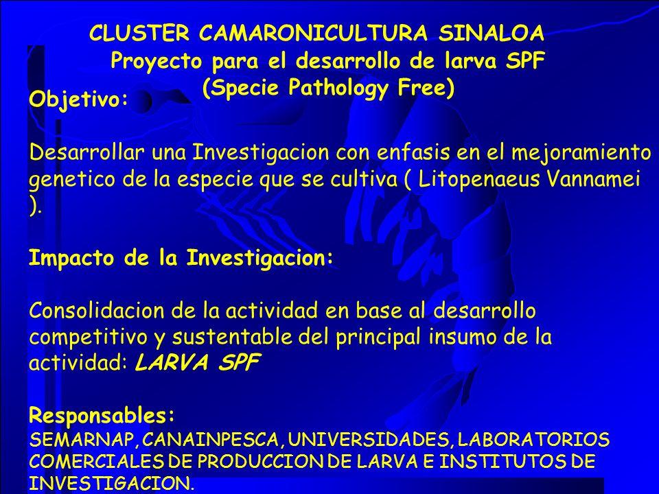Objetivo: Desarrollar una Investigacion con enfasis en el mejoramiento genetico de la especie que se cultiva ( Litopenaeus Vannamei ). Impacto de la I