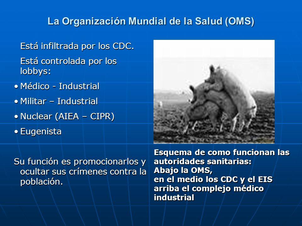 Está infiltrada por los CDC. Está controlada por los lobbys: Médico - IndustrialMédico - Industrial Militar – IndustrialMilitar – Industrial Nuclear (