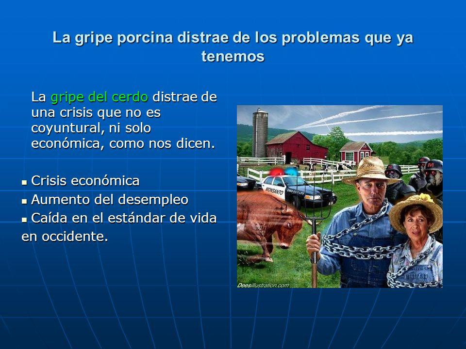 La gripe porcina distrae de los problemas que ya tenemos La gripe del cerdo distrae de una crisis que no es coyuntural, ni solo económica, como nos di