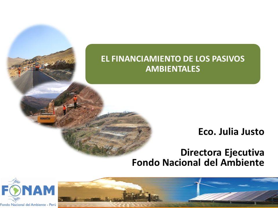 EL FINANCIAMIENTO DE LOS PASIVOS AMBIENTALES Eco. Julia Justo Directora Ejecutiva Fondo Nacional del Ambiente