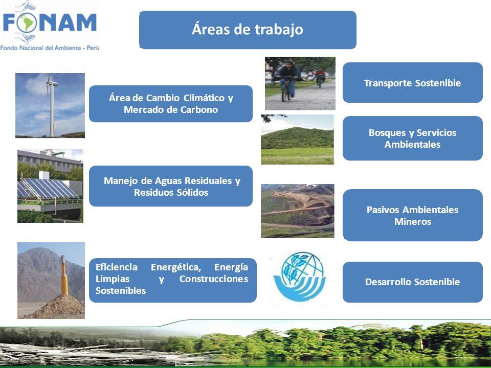 Áreas de trabajo Eficiencia Energética, Energía Limpias y Construcciones Sostenibles Área de Cambio Climático y Mercado de Carbono Manejo de Aguas Res