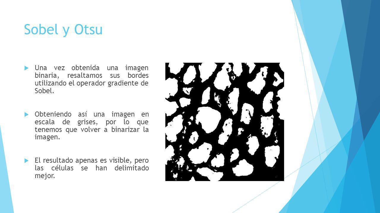 Sobel y Otsu Una vez obtenida una imagen binaria, resaltamos sus bordes utilizando el operador gradiente de Sobel. Obteniendo así una imagen en escala
