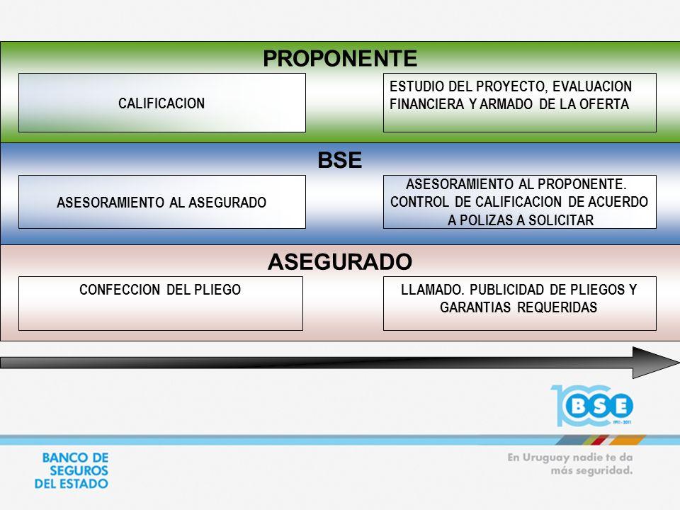 PROPONENTE ASEGURADO BSE ASESORAMIENTO AL ASEGURADO CONFECCION DEL PLIEGO CALIFICACION ESTUDIO DEL PROYECTO, EVALUACION FINANCIERA Y ARMADO DE LA OFER